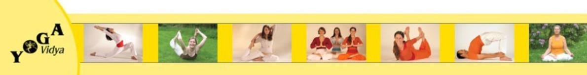 Yoga Vidya International - Yoga, Meditation and Spirituality Logo
