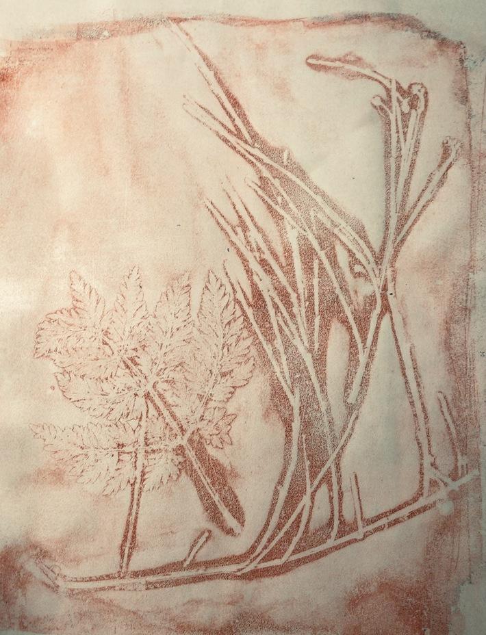 Pflanzenwelten 2