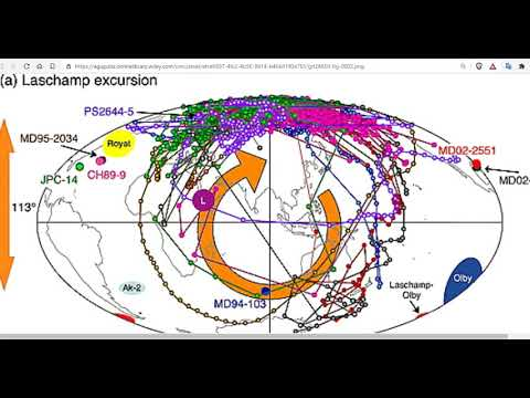 Geomagnetic Excursions: Known and Unknowns - What The Main Stream Media Will Never Tell You Here Now