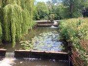 Barcombe Mills circular 10 June 2021