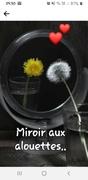 Miroir aux alouettes