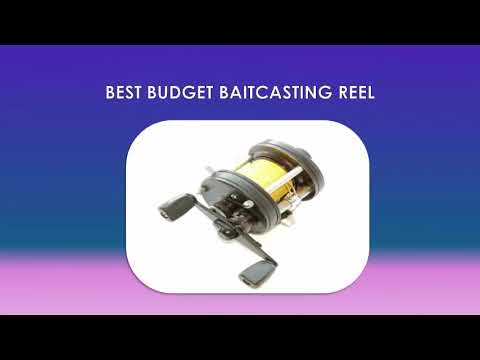 What To Look Out For When Choosing A Fishing Reel