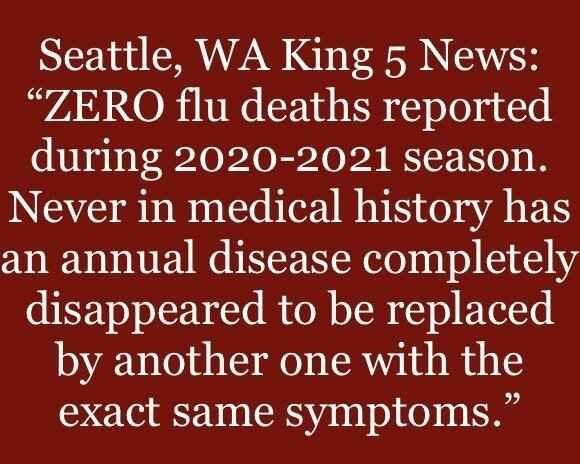 Zero Flu Deaths 2020-2021