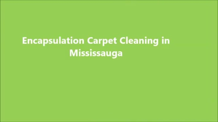 Affordable Cleaning Services in Toronto | Pamir Carpet Cleaning