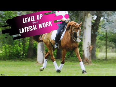 Exercises To Improve Lateral Work In Dressage: Shoulder In, Haunches In & Half Pass