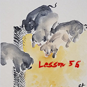 Lesson 56 Pig and Boar