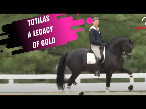 Edward Gal & Totilas In The Warm-Up - A Legacy Of Gold!
