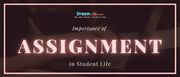 Importance of Assignment in Student Life