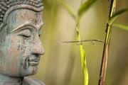 Développer la Conscience de l'Univers Intérieur, en suivant les énergies