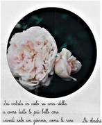 Sei volata in cielo su una stella e come tutte le più belle cose vivesti solo un giorno come le rose. De Andrè