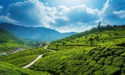 Best Tour Package-@MAKE OUR MOMENTS-Kerala Tour Package