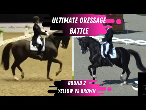 Ultimate Dressage Battle - Round 2 - Passage: Who Did Better? Brown vs Yellow