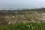 Telescombe Cliffs Piddinghoe circular 17 June 2021