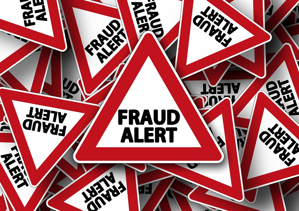 Voter Fraud Petition Download