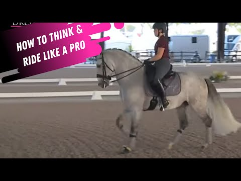 PRO TIPS: How To Think AND Ride Like A Top Professional Trainer In Dressage