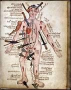 Seminario De Astrología Horaria con Aplicaciones a la Medicina