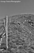 ο ξύλινος φράχτης