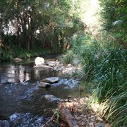 Crystal Waters Permaculture Design Course
