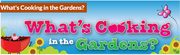 What's Cooking in the Gardens?