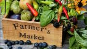 Pacifica Coastside Farmers Market at Rockaway Beach