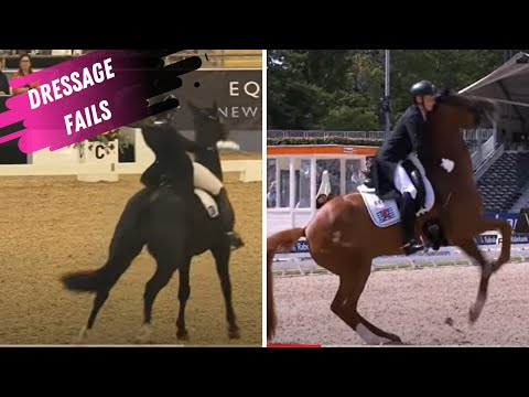 Dressage Fail: Starlite Gets Star struck & The Ultimate Hold My Beer Moment In Rotterdam
