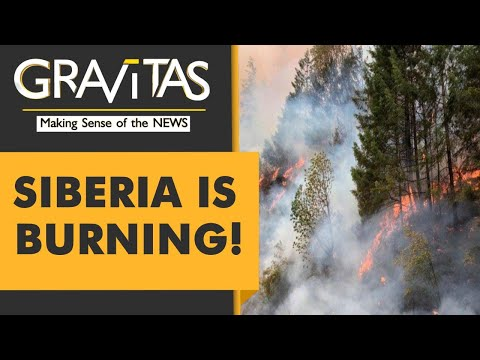 Gravitas: Climate change super-charges wildfires
