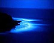 CopyofBlue_Water