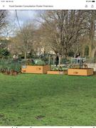 Project Food Garden