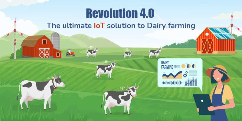 An Upgrade to Farming in 2021: IoT to Milk the Dairy Industry