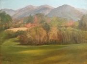 Nantahala Mountain Study