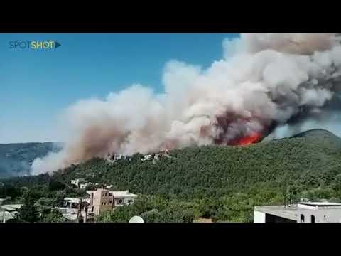 Lebanon: Massive Forest Fire Devastates the Maronite Village of Qoubayat
