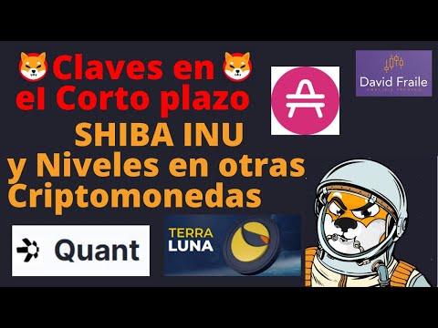 Video Análisis con David Fraile: Clave a corto plazo en Shiba (SHIB) Niveles en Hyperspace (AMP) Terra (LUNA) y Quant (QNT)