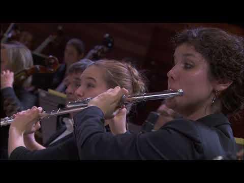 """Beethoven : Symphonie n°6 """"Pastorale"""" sous la direction de Daniele Gatti"""