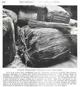 NGM 1921-08 Pic 11