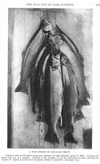 NGM 1921-08 Pic 03