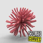 Coiled Curves