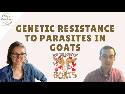 Genetic Resistance to Parasites in Goats