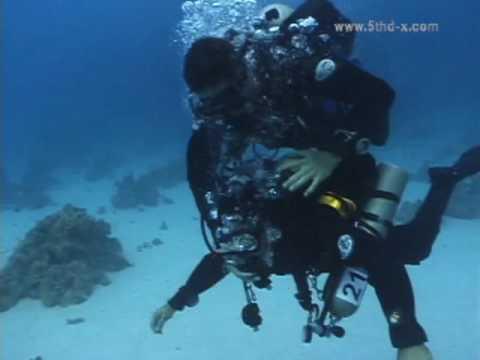 DIR base Rescuing a Toxic Diver