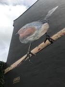 Robin street art, Harringay Passage (1 of 2)