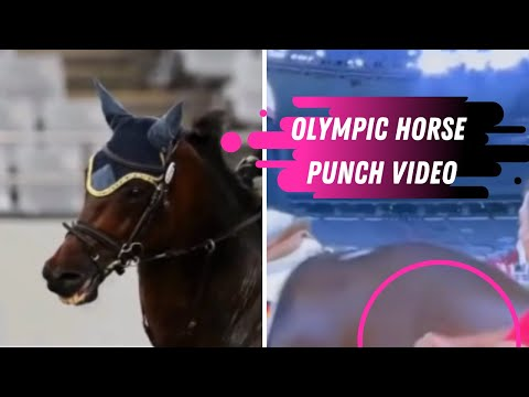 Horse Gets Punched By German Coach At The Tokyo Olympics In Modern Pentathlon