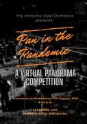 Pan in the Pandemic: A Virtual Panorama