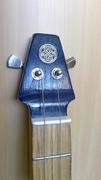 TARDIS Guitar
