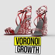 Voronoi Growth
