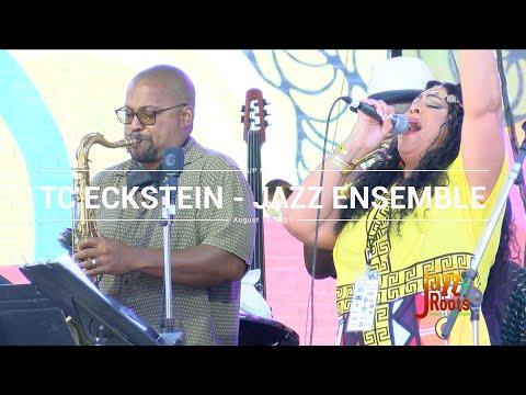 Springfield Jazz & Roots Festival 2021 - TC Eckstein