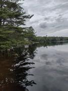 Maine 8