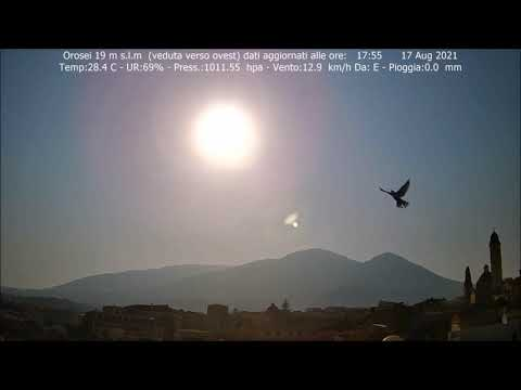 Heart--Pounding: Visible Flybys of the Nemesis/PlanetX System