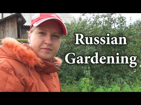 Russian culture - gardening, russian dacha, русский сад, русская дача, Russian garden