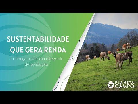 02 - Fazenda em Minas Gerais molda o futuro do agronegócio - Planeta Campo