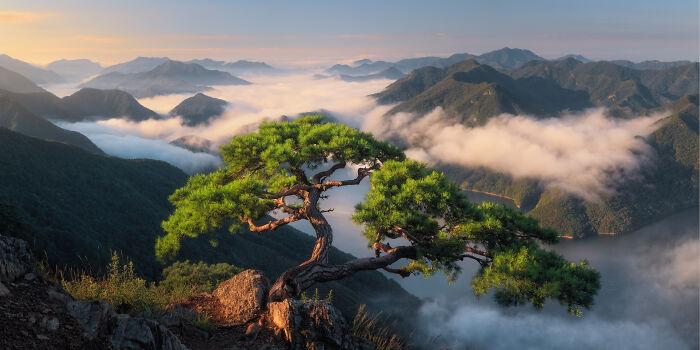 სამხრეთ კორეა, მოგზაურობა, კორეის ყოველდღიურობა, ფოტოგრაფია, ფოტობლოგი, qwelly