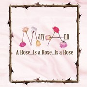 A Rose...Is a Rose... Is a Rose